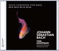 Solo Cantatas for Bass