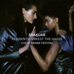Live at Gnawa Festival