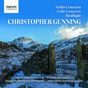 Violin Concerto, Cello Concerto & Birdflight