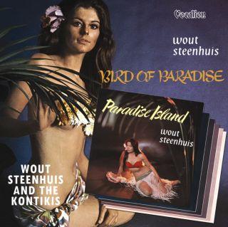 Paradise Island & Bird of Paradise