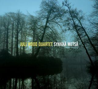 Synkka Metsa - Dark Forest