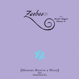 Zaebos: Book of Angels Volume 11
