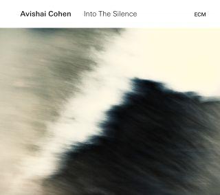 Into The Silence