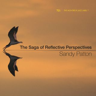 The Saga of Reflective Perspectives