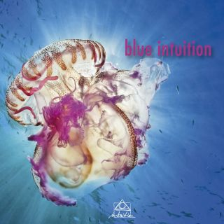 Blue Intuition