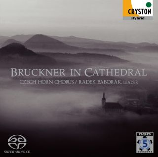 Bruckner in Cathedral