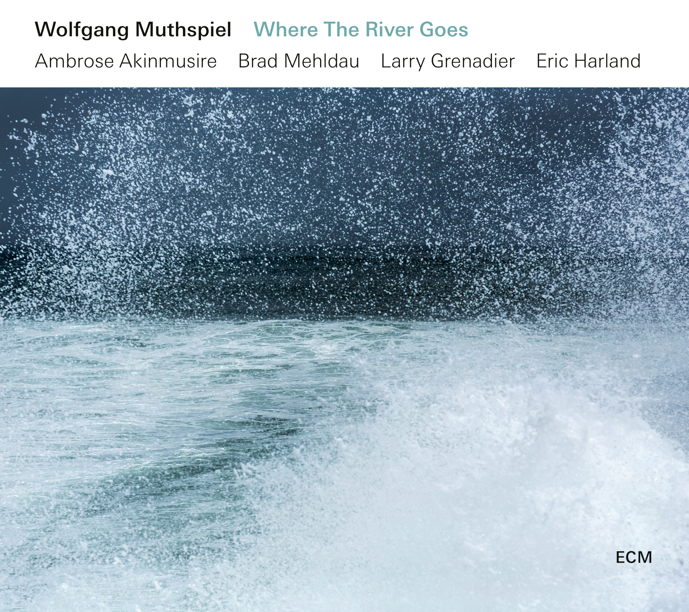 Image result for Wolfgang Muthspiel, WHERE THE RIVER GOES (ECM